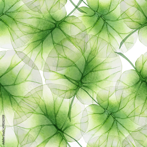 Fototapeta do kuchni Watercolor Seamless floral pattern with lotus leaves