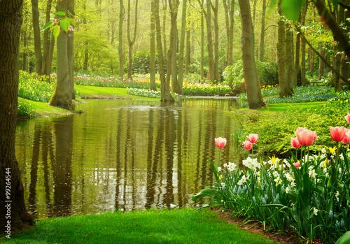 spring garden Keukenhof, Netherlands