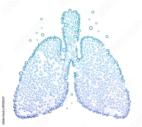 Fotografia lungs with oxygen bubbles Isolated on white background