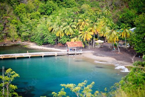 Foto op Plexiglas Caraïben Amazing black sandy beach with coconut palm tree Anse Noire in Martinique Island, Caribbean