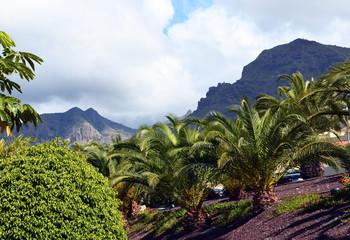 Fototapeta na wymiar Beautiful view of Torviscas Alto,Tenerife,Canary Islands.