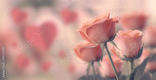 Happy valentine's day, fine daisy color tone design, Blur and Select focus backg Poster