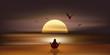 Paysage Soleil-Zen