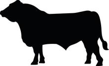 Bull Vector Silhouette