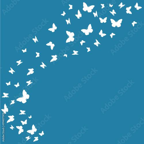 Photo sur Toile Oiseaux sur arbre fond abstrait,papillons