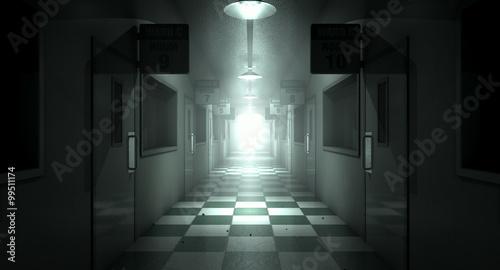 Fotografie, Obraz  Mental Asylum Haunted