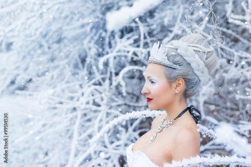 Obraz na plátně  Frost (Anna-Lisa Kowatsch)