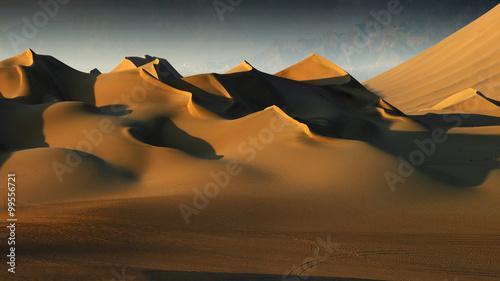 Poster de jardin Desert de sable dunes