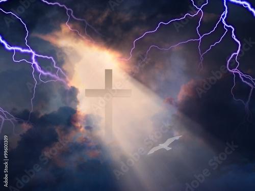 Fotografie, Tablou  Cross in Sky with White Bird