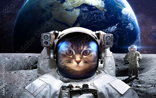 Deurstickers Nasa Brave cat astronaut at the spacewalk. This image elements furnished by NASA.