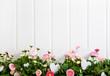 canvas print picture - Floraler Blumen Hintergrund auf Holz mit rosa Gänseblümchen