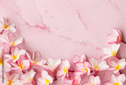 Deurstickers Frangipani pink plumeria background and space