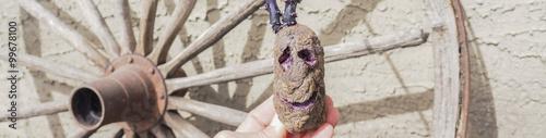 Fotografia  mister potato head