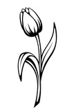 Black contour of a tulip flower. Vector line art illustration.