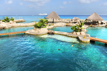 Dolphin Pools In Cozumel Mexico