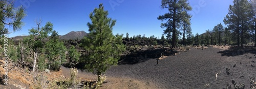 Foto op Plexiglas Route 66 Sunset Crater Volcano National Monument