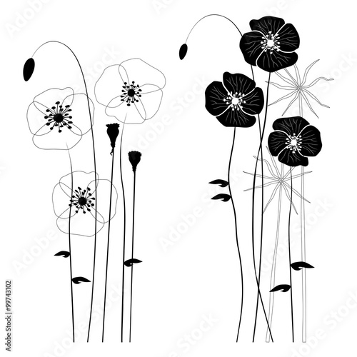Set of wild plants, poppies and dandelions - vector illustration - 99743102