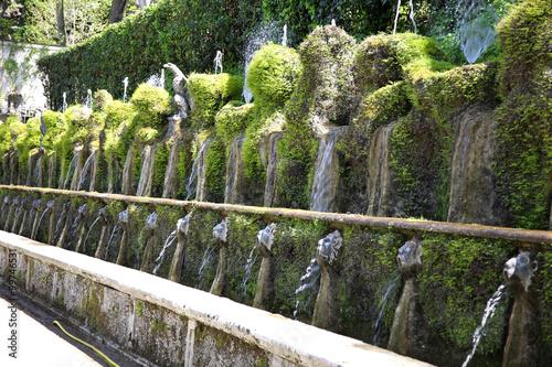 Fotografie, Obraz  Le Cento Fontane, Villa d`Este fountain and garden in Tivoli nea