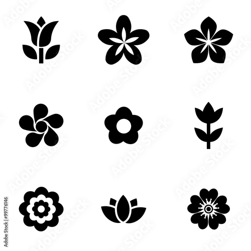 Photo  Vector black flowers icon set