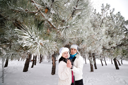 couple on the background of snowy trees Poster