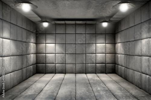 Fotografie, Obraz Padded Cell Dirty