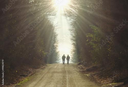 Fotografie, Obraz  Wo ist ein Weg auch ein Ziel