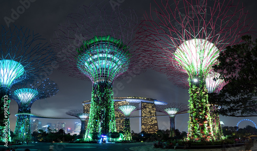 Canvas Prints Singapore Singapore Garden by the Bay or Supertree Grove night illumination