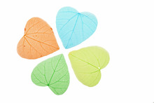 Four Colored Heart Shaped Skeleton Leaves On White