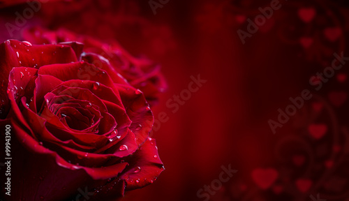 Keuken foto achterwand Roses Rose. Red roses. Bouquet of red roses. Valentines Day, wedding day background. Rose petals and hearts Valentine gift boxes. Valentines and wedding border. Waters drops on roses petals.