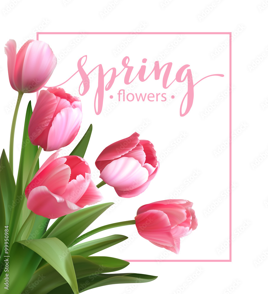 Fototapety, obrazy: Spring text with  tulip flower. Vector illustration