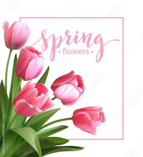 Photo  Spring text with  tulip flower. Vector illustration
