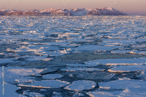 Stickers pour porte Arctique Sea Ice - Greenland