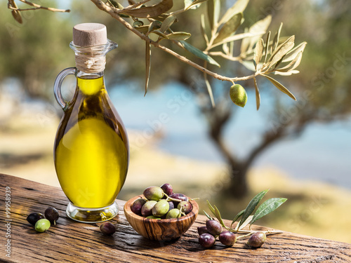 Olive oil and berries are on the wooden table under the olive tr