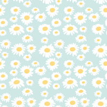 Seamless Floral Pattern With Chamomiles On Blue Background