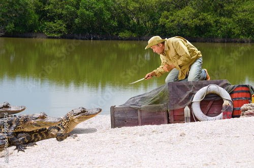 Fotografie, Obraz  Funny ship wrecked castaway man stranded in the mangrove swamp being attacked by alligators as he climbs on top of his cargo boxes and points his knife at the alligators protecting his supplies