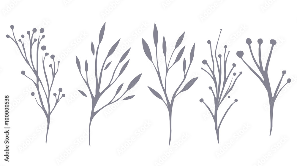 Photo  Vector set of delicate leaves and herbs for your creativity