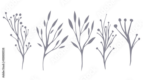 Foto  Vector set of delicate leaves and herbs for your creativity