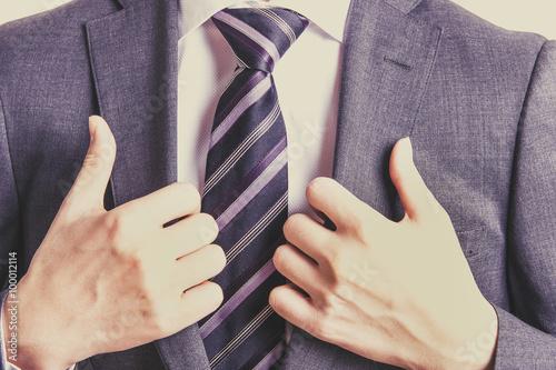 Canvas-taulu スーツのビジネスマン,上半身,レトロカラー