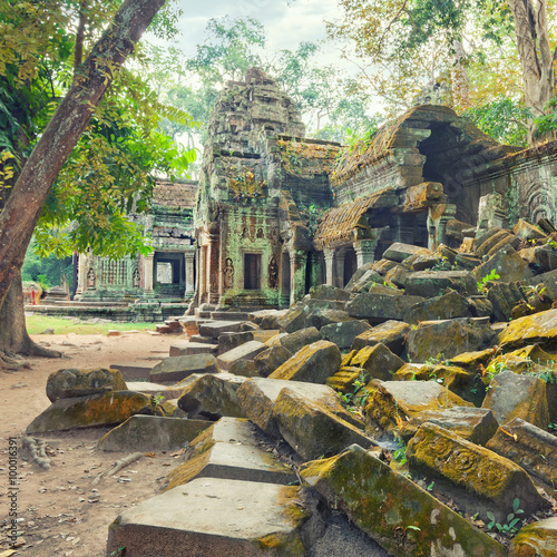 фотография  Ta Prohm Temple ancient ruins, Angkor
