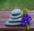 piedras y flores azules