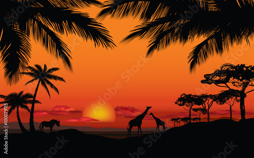 Foto op Plexiglas Oranje eclat African landscape with animal silhouette. Savanna sunset background