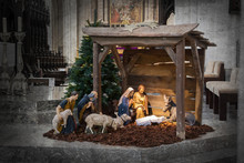 Christmas Crib, Before Christmas
