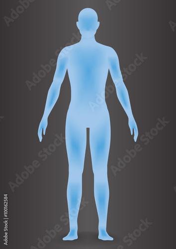 Fotografía  human body silhouette, vector illustration