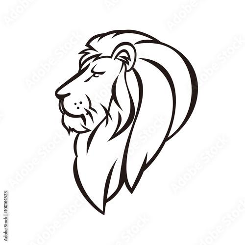Fototapety, obrazy: Lion Head