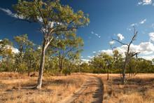 Agate Creek Fossicking Area, Near Forsayth, North Queensland, Australia