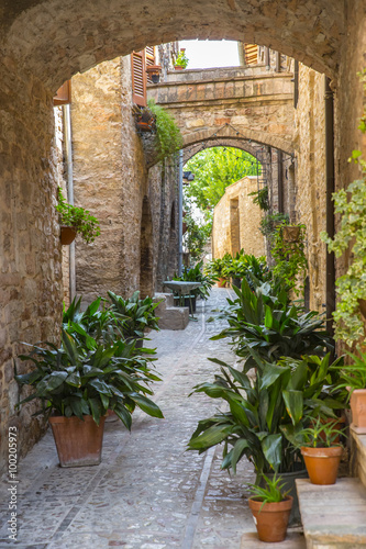 Fototapeten Schmale Gasse Street decorated with plants and flowers in the historic Italian city of Spello (Umbria, Italy)