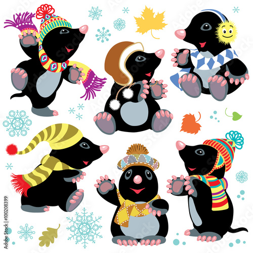 plakat cartoon mole at winter time