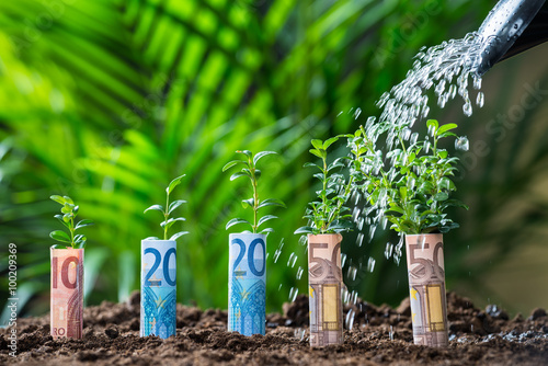 Fotografía  El agua que se vierte sobre plantas envuelto con billetes de euro