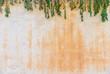 Hintergrund Textur Mediterran Wand Verwittert