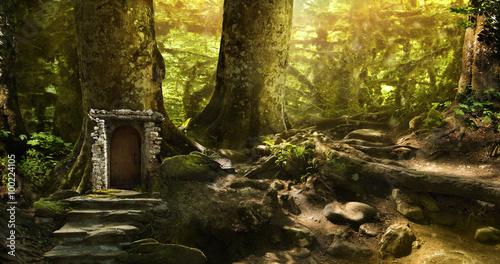 Plakat magiczny świat fantasy